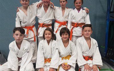 Landes-Mannschafts-Meisterschaft Judo in Dresden