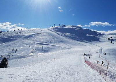 skilager-alpin-50